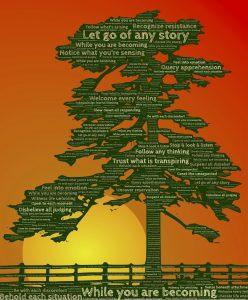 arbre - sagesse - lâcher prise - croissance